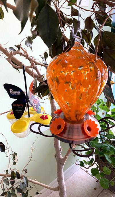 butterfly feeder, pollinators, hummingbird feeder